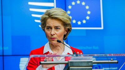 EZB-Urteil: Von der Leyen prüft Verfahren gegen Deutschland