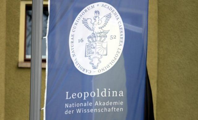 Anwälte machen Druck auf Leopoldina: Eidesstattliche Versicherung zu PCR-Tests gefordert