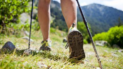 Das Nordic-Walking-Einmaleins – Lauftipps, um richtig in Schwung zu kommen
