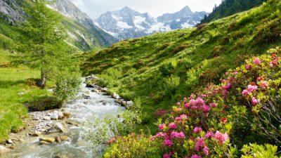 Die schönste Zeit – Von Annette von Droste-Hülshoff