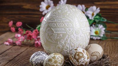 Archäologen auf 5.000 Jahre alter Eiersuche: Antike Straußeneier als Luxusgüter