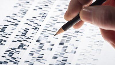 Island: Es gibt spezifische Mutationen von COVID-19 in China, England, USA, Italien oder Österreich