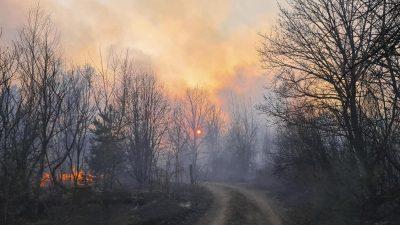 Mindestens neun Tote bei Waldbränden im Osten der Ukraine