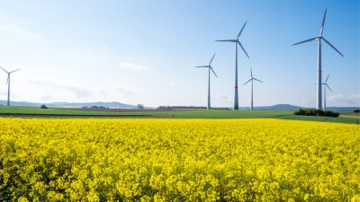 Bund-Länder-AG zur Windkraft liegt auf Eis – Fachpolitiker über Mindestabstand zerstritten