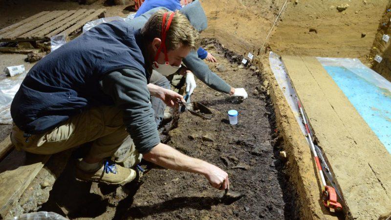 Ausgrabung von Hinterlassenschaften des Homo sapiens in der Bacho-Kiro-Höhle