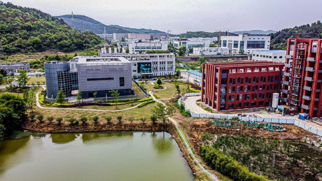 """""""Corona kam doch aus einem Labor in Wuhan"""": Hamburger Physiker widerspricht Chinas KP und WHO"""