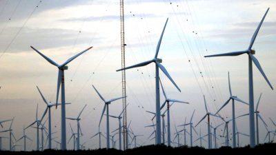 """Mexiko setzt auf Schweröl: """"Windräder verschandeln die Landschaft"""" und die Gewinne fließen ins Ausland"""