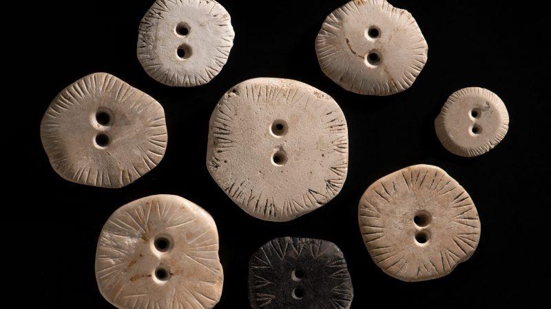 Kalksteinscheiben aus dem Blautal