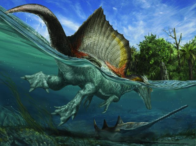 Spinosaurus auf der Jagd in kreidezeitlichen Gewässern der Sahara