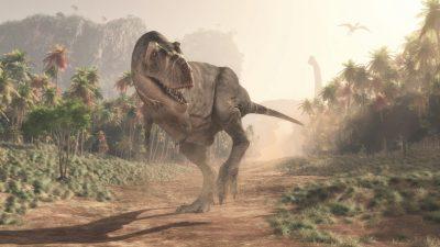 """T. rex als Spitzensportler: """"Sein Leben war ein Marathon, kein Sprint"""""""