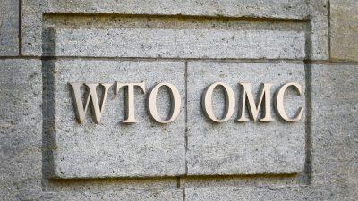 WTO kann sich nicht auf Interimsnachfolger für Chef Azevedo einigen