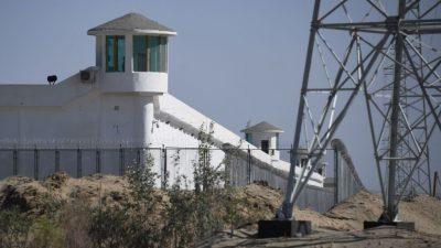 US-Regierung stoppt Baumwoll-Importe aus uigurischer Provinz Xinjiang