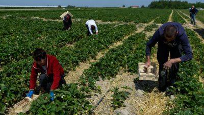 Union will Zuwanderung vom Westbalkan drosseln: Jährliche Obergrenze von 15.000 Menschen gefordert