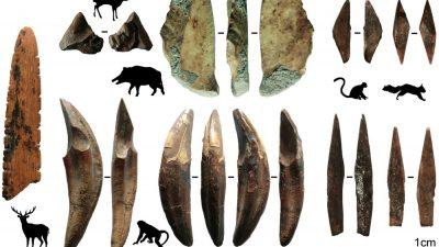 Archäologie: Ältester Beleg für Pfeil und Bogen außerhalb Afrikas