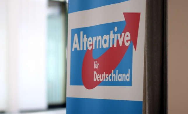 Gerichtsurteil: Thüringer AfD darf nicht öffentlich als Prüffall bezeichnet werden