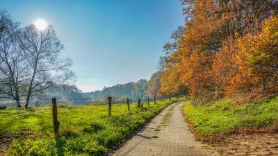 Deutsche wollen im Alter am liebsten auf dem Land wohnen