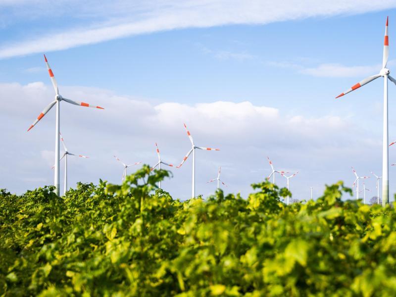 Ökostrom deckt 43 Prozent des Verbrauchs – Strom muss aus Ausland zugekauft werden