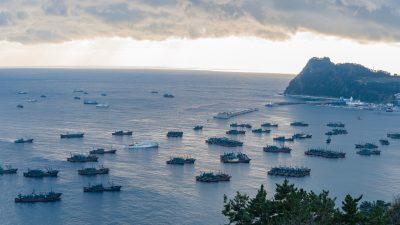 """Illegale Fischerei zwischen Korea und Japan: Satellitenbilder zeigen massive chinesische """"Dunkle Flotten"""""""