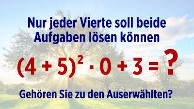 Zu einfach? Nur jeder Vierte soll beide Rätsel in unter 10 Sekunden lösen können