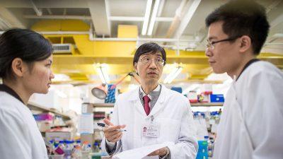 Wissenschaftler schätzen 2,2 Millionen Infizierte Anfang März in Hubei – Chinas Regime hat Beweise vernichtet