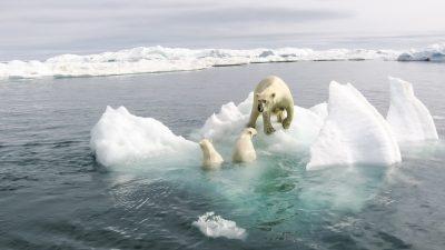 Weltuntergang bleibt aus: Linker US-Demokrat bricht mit Klima-Alarmismus und bedauert Panikmache