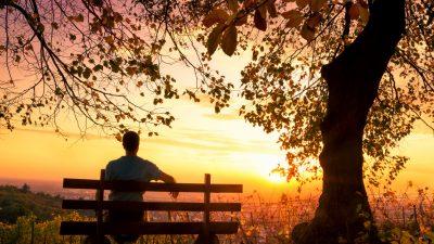 Musik am Abend: Das Streichquartett Nr. 6 von Mendelssohn