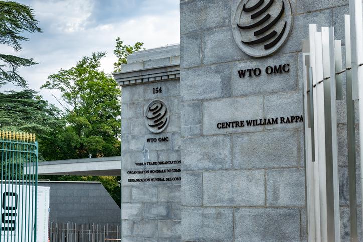 Drei weitere Kandidaten bewerben sich um WTO-Vorsitz