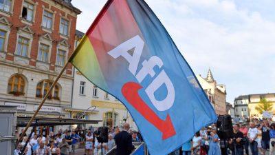 Nach Einstufung als Verdachtsfall: AfD-Mitglieder bieten Verfassungsschutz Zusammenarbeit an