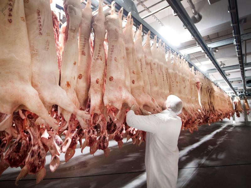 """FDP-Fraktion gegen Steuer auf Fleisch für mehr Tierwohl: """"Schlichtweg Augenwischerei"""""""