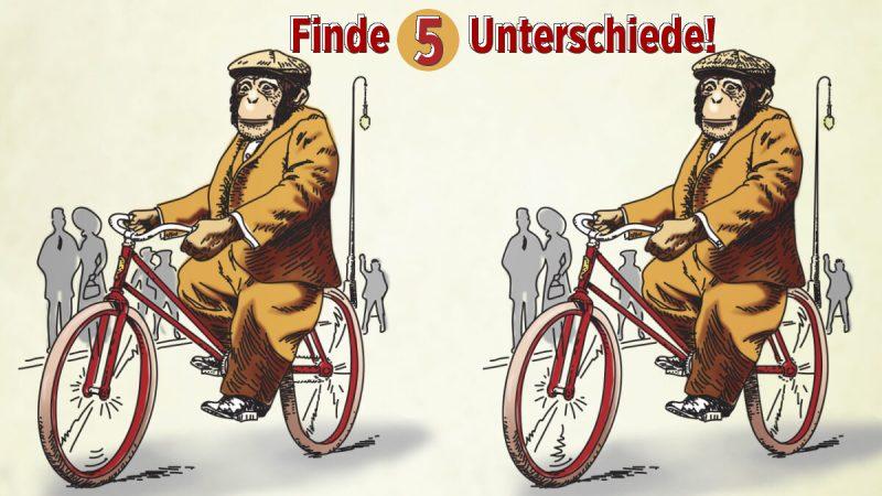 Rätsel Affe Fahrrad Unterschiede