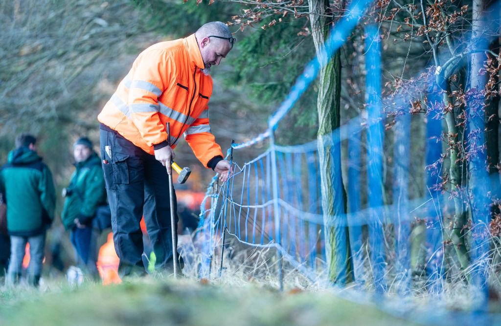 Klöckner verärgert über Vandalismus an Schweinepest-Schutzzäunen