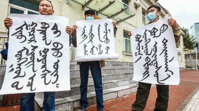 Innere Mongolei: Warum Peking Unruhe schafft, wo es zuvor ruhig war