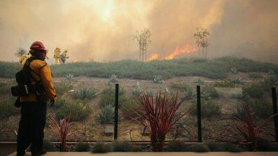 Waldbrände in Kalifornien: 90.000 Menschen auf der Flucht