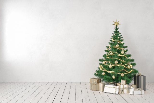 Familienfest ohne Familie? Politiker aus Bund und Ländern für Kontaktverbote an Heiligabend