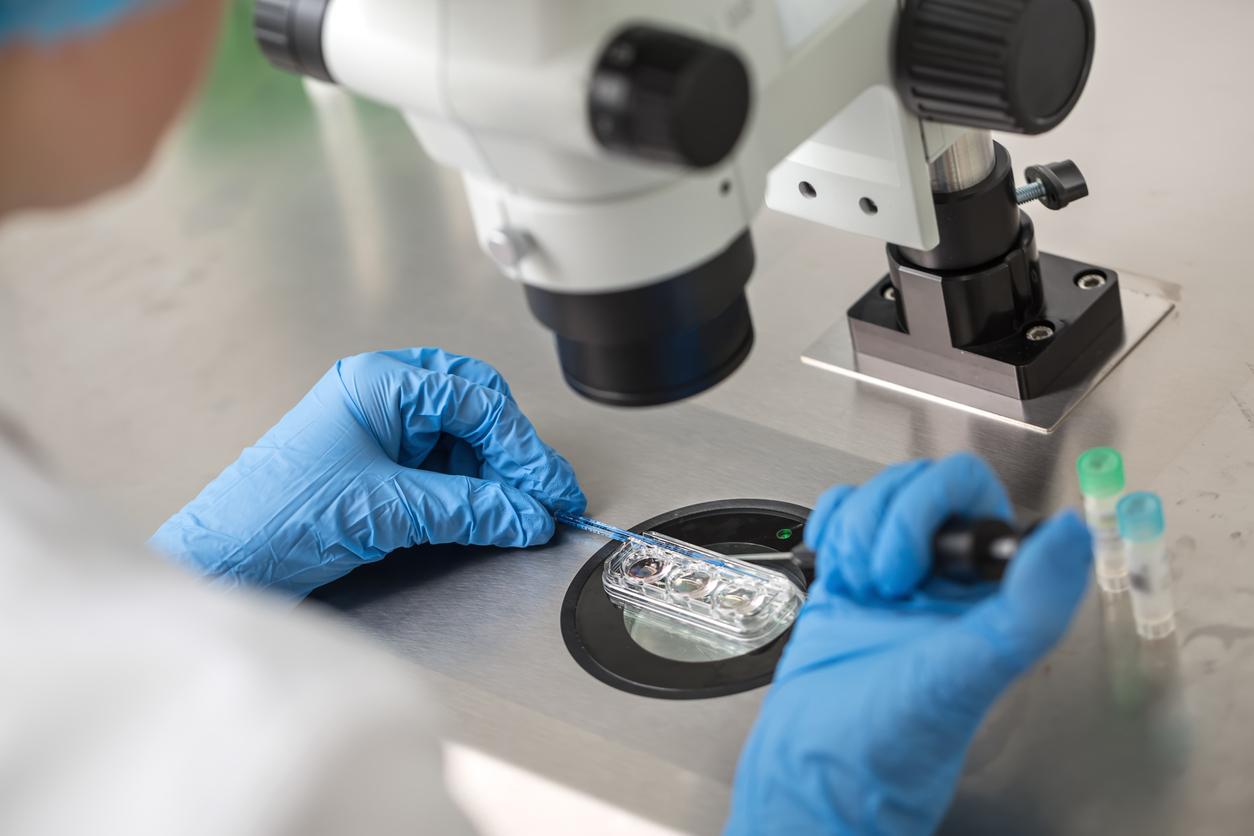 Entscheidung in Revisionsverfahren zu Embryonenspende erwartet