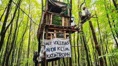 Ermittlungen gegen Polizisten nach Sturz von Demonstrantin im Dannenröder Forst