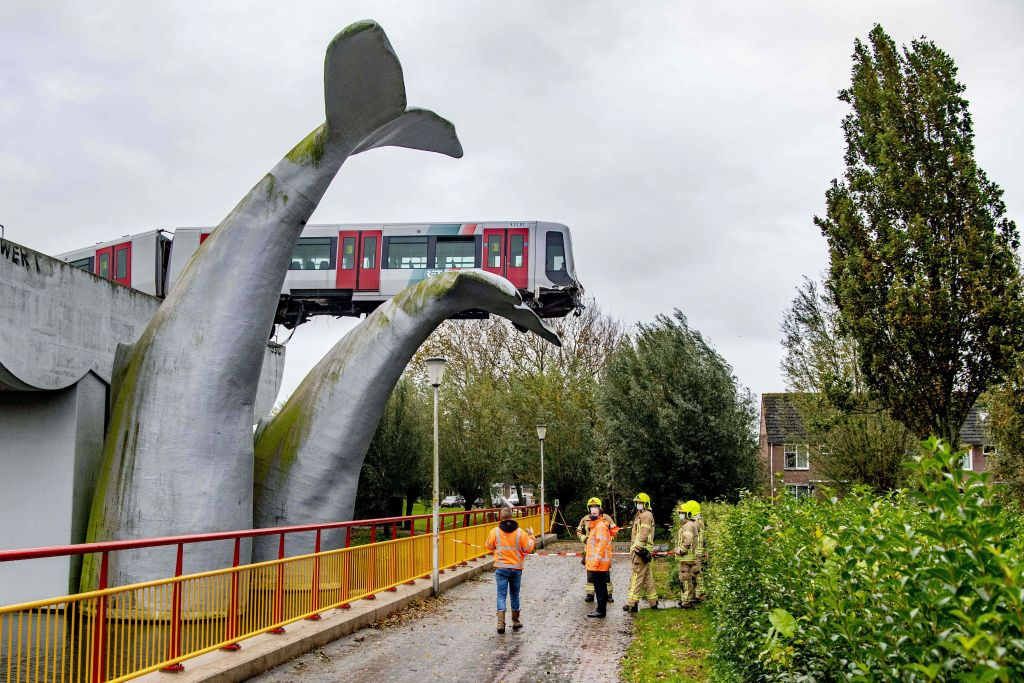Kunst rettet Leben: U-Bahn bei Rotterdam landet auf Wal
