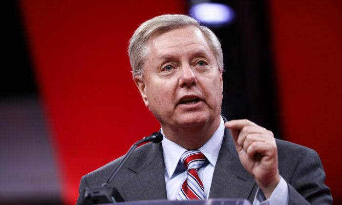 """Lindsey Graham: """"Trump darf Niederlage nicht eingestehen, ehe Gerichte über die Wahl geurteilt haben"""""""