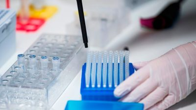 Corona-Mutation B117 erstmals in Deutschland und Japan nachgewiesen