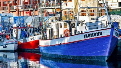 Ostseefischerei in größter Krise – Umsatz der Nordsee-Fischer hat sich halbiert