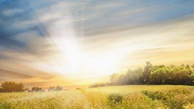 Die goldene Gabe der Selbsterkenntnis – Von Christian Morgenstern