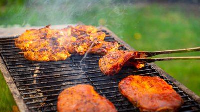Studie: Kein Fleisch ist auch keine Lösung