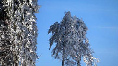 Meteorologen machen Hoffnung auf weiße Weihnachten