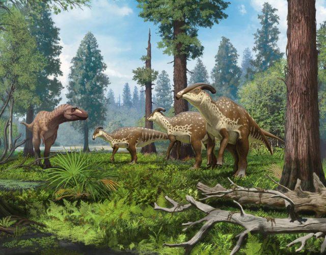 """Skurriler Dino: Parasaurolophus und sein bizarrer """"Kopfschmuck"""""""