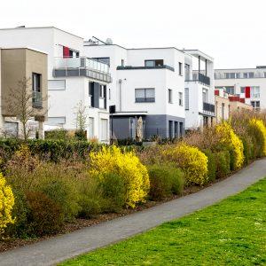 Einfamilienhaus als Feindbild: Grüne für Verbot neuer Eigenheim-Siedlungen
