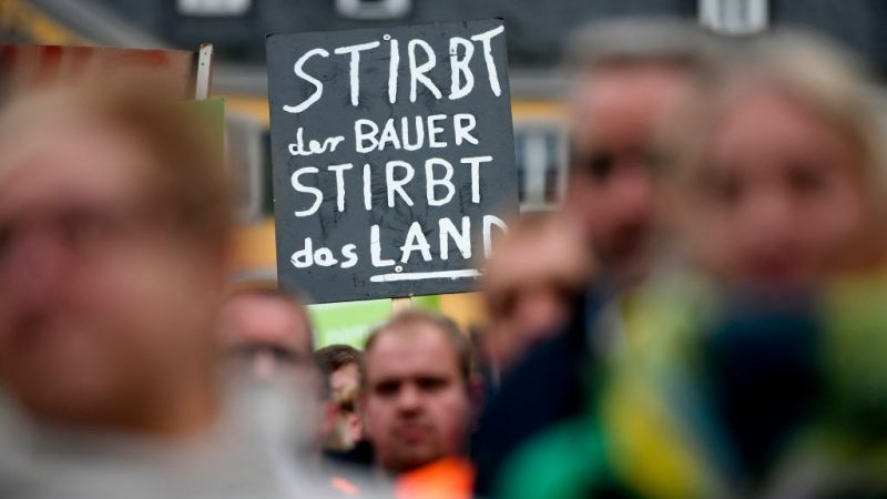 """Bauernpräsident kritisiert Insektenschutzgesetz als """"grottenfalsch"""""""