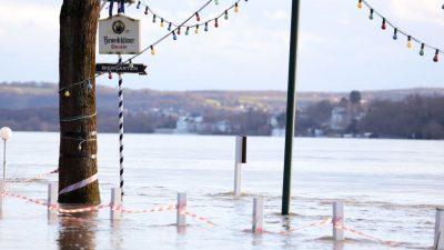 Hochwasser auf dem Rhein – Mildes Wetter im Süden – Eisregen und Schneefälle im Norden