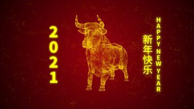Das chinesische Neujahr 2021: Jahr des Metall-Büffels