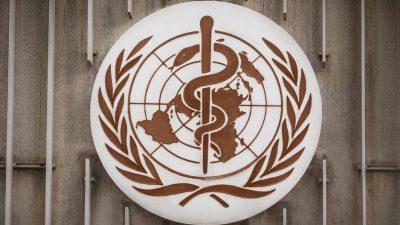 """Experten: WHO und Länder waren bei Corona zu langsam – Pandemie """"hätte verhindert werden können"""""""