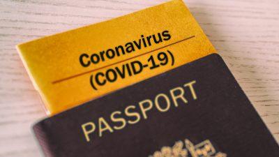 Merkel: EU will Corona-Impfausweis möglichst bis zum Sommer einführen – Belgische Regierung warnt vor ihren verteilten Corona-Masken